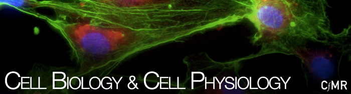 header_cellbiocellphysio